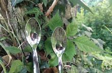sito spoon piccola