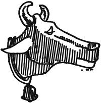 mucca200